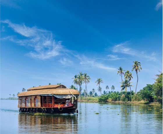 Kerala Wellness & Backwaters (PRIVATE TOUR)