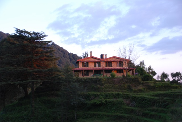 Nandadevi Estate, Binsar taken by Julie Miller