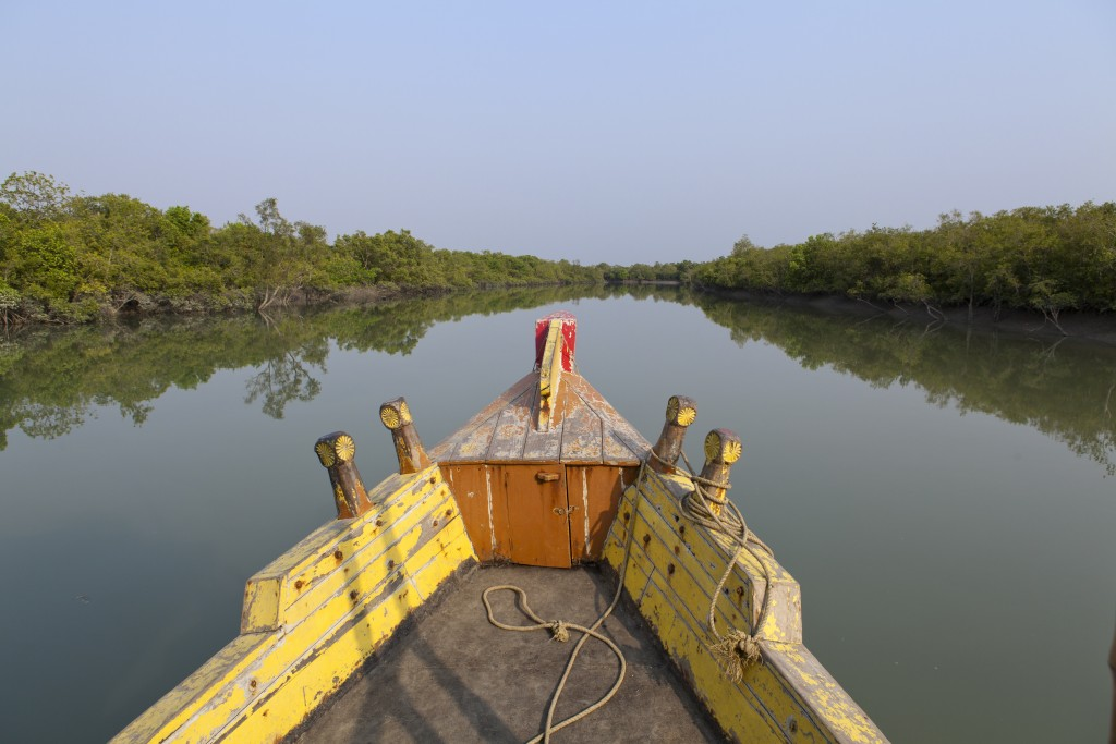 Sundarbans. Mantra Wild Safari Tour