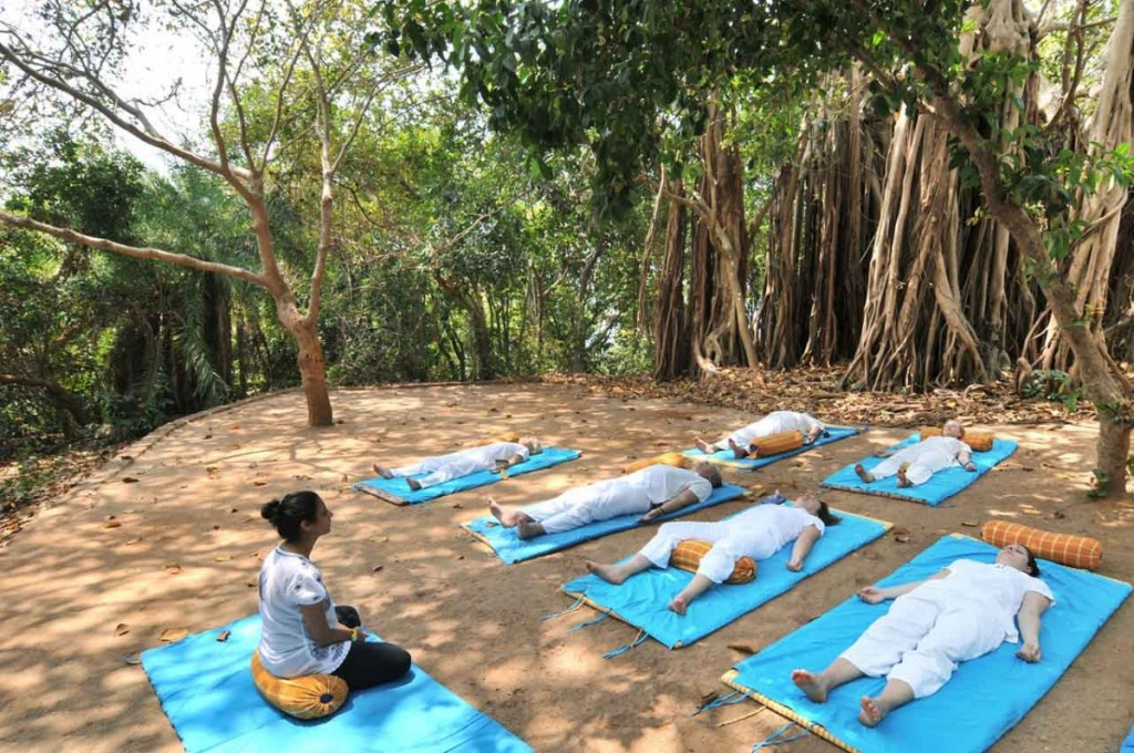 yoga nidra Mantra Wild