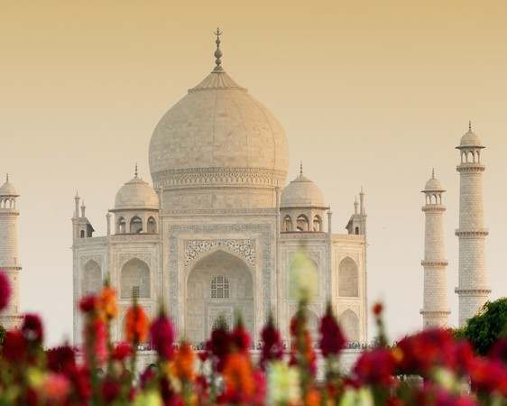TAJ, TIGERS & PALACES (17 Days)
