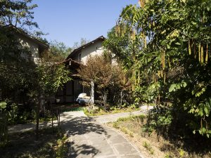 Mantra Big 5 Chitvan Jungle Lodge Indian Safaris with Mantra Wild
