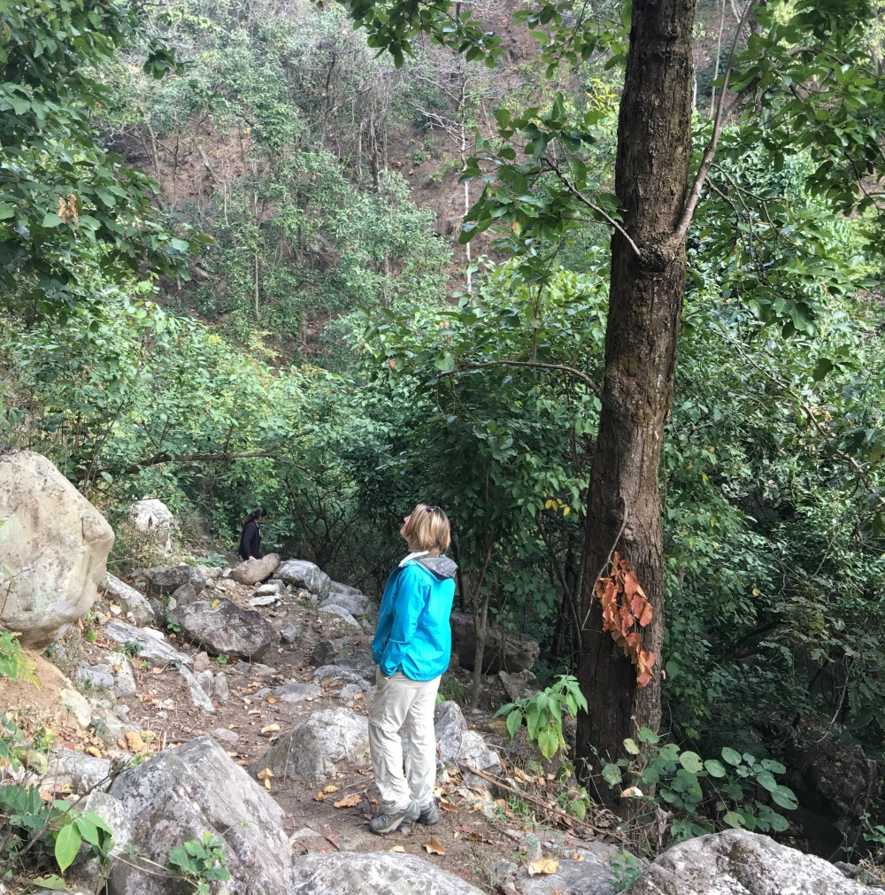 Mantra Wild Safari Vanghat