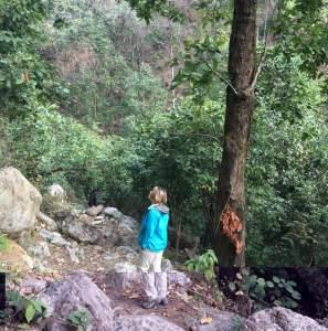 Mantra Wild Birding tours