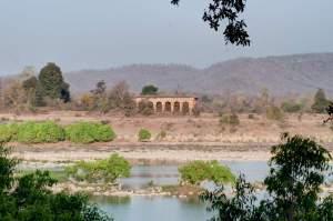 India wildlife holidays