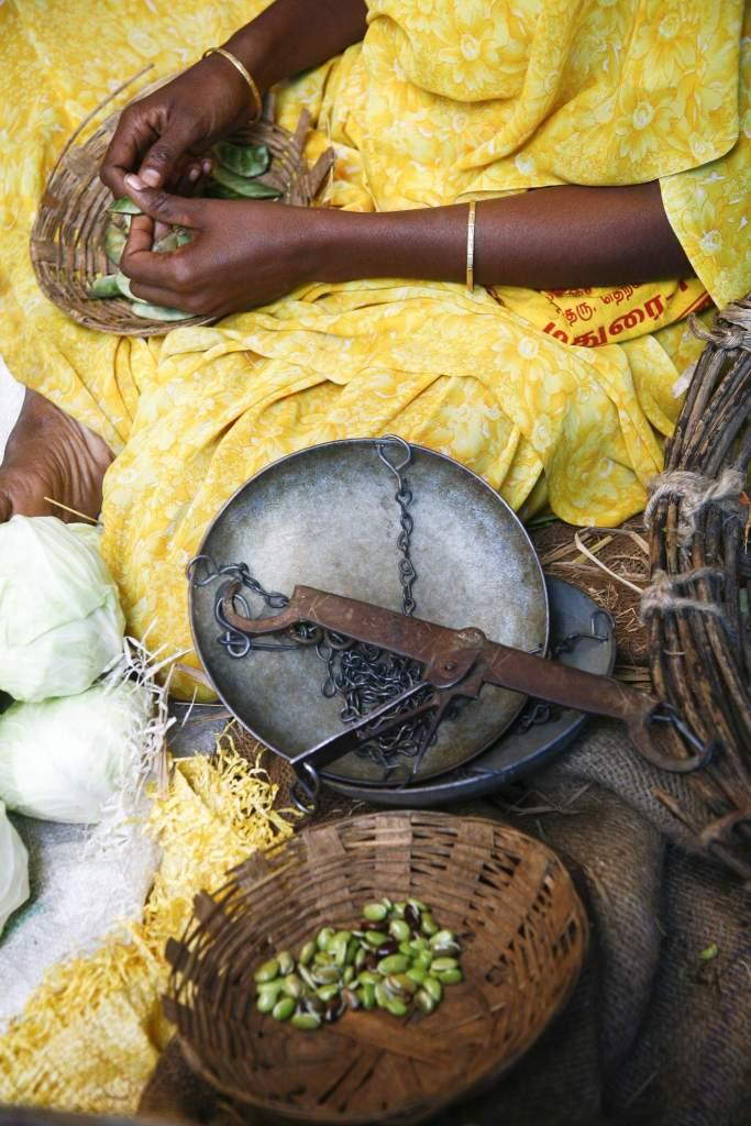 10 Reasons to Visit Kerala Mantra Wild Adventures