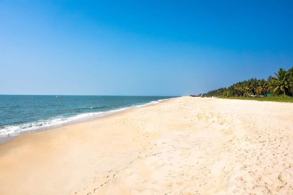 10 Reasons to Visit Kerala. Kerala Ayurveda and Wellness Tours Mantra Wild