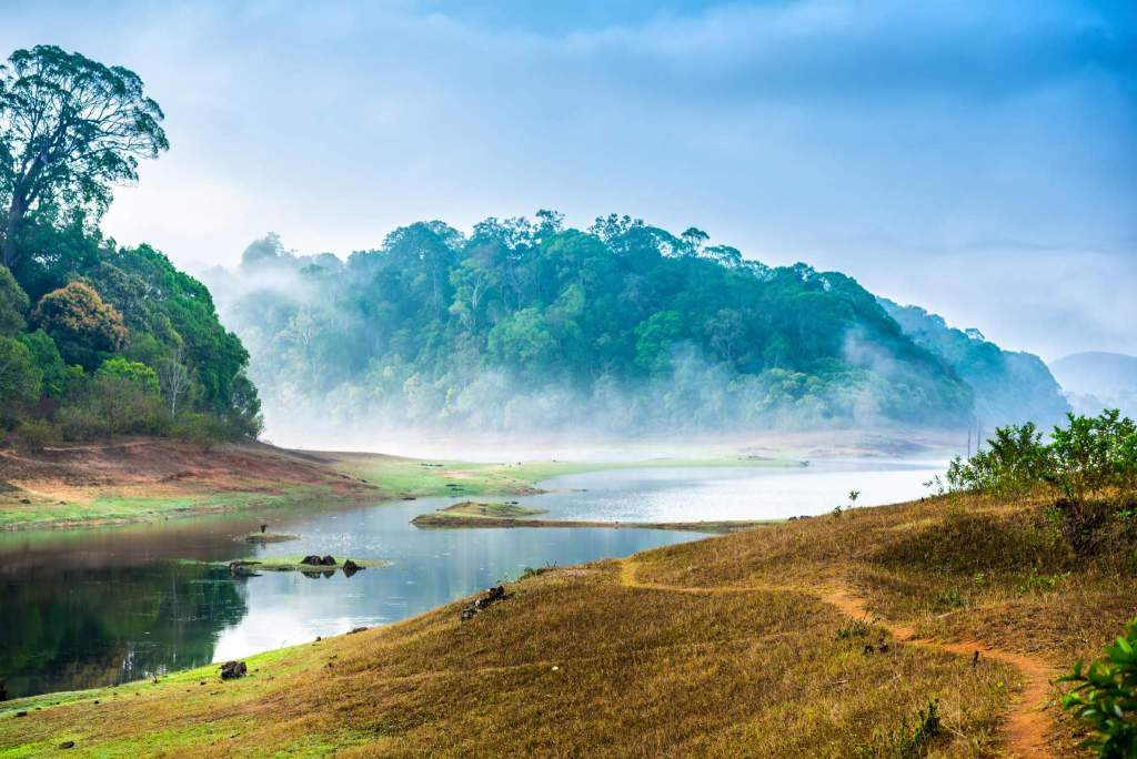 10 Reasons to Visit Kerala. Periyar Wildlife Tours Mantra Wild
