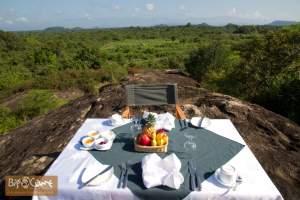 Wild Sri Lanka Photo Safari tour